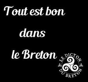"""Boxer """"Tout est bon dans le breton"""""""
